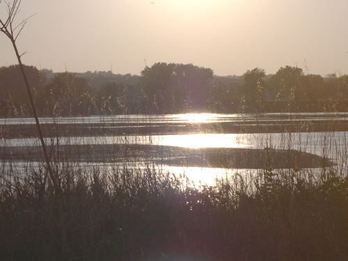 Sun across the lower Platte River. (Rodney Verhoeff)