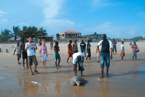 A crowd gathers in Teshie as Emmanuel (standing to the right of the turtle) sets a female free. (Mitch Paine)