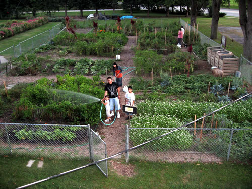 Growing food and community   Prairie Fire - The Progressive Voice of ...
