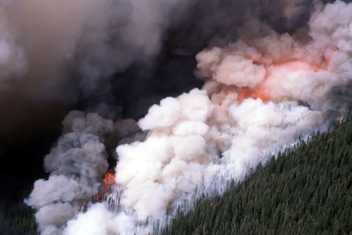 Wildfires scorched more than 1.4 million acres in and around Yellowstone National Park in 1988. (Jim Placo, National Parks Service).