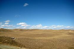 The Sandhills near Dunning, Neb. (Jane Kleeb)