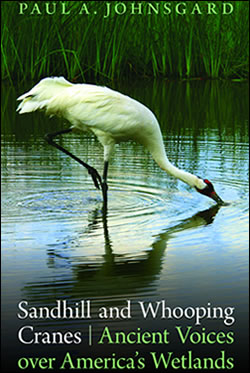 "Ancient Voices over America's Wetlands"" by Paul A. Johnsgard"