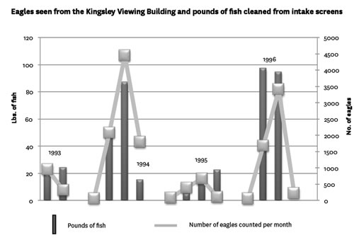 Graph of Eagles seen from the Kingsley Viewing Building and pounds of fish cleaned from intake screens