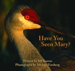 Have You Seen Mary? by Jeff Kurrus