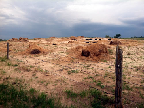 Fragile topsoil in the Sandhills is vulnerable to blowouts like this one adjacent to Susan Luebbe's ranch. (Greg Rohde)