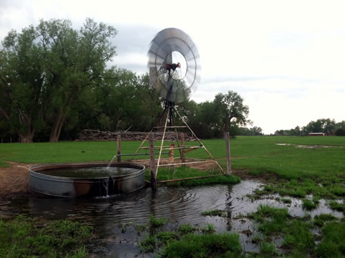 One of 40-plus water troughs provided by a high water table and a windmill on Susan Luebbe's ranch. (Greg Rohde)