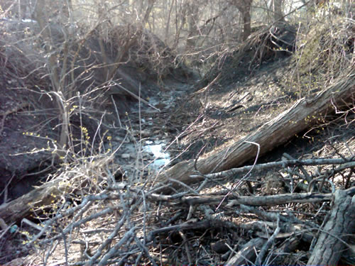 Highly eroded creek channel in Douglas County, Neb. (Kent Holm)