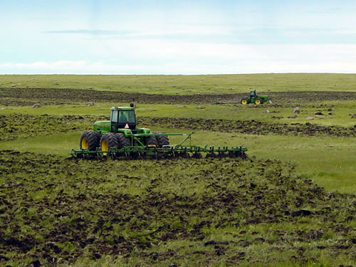 Farmers plow native prairie sod in eastern South Dakota to plant corn or soybeans. As farmers and ranchers destroy hundreds of thousands of acres of perennial grasslands each year in the western Corn Belt questions about consequences remain largely unasked. (Peter Carrels)
