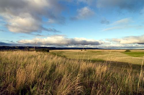 The Nature Conservancy's Niobrara Valley Preserve. (Chris Helzer/The Nature Conservancy)