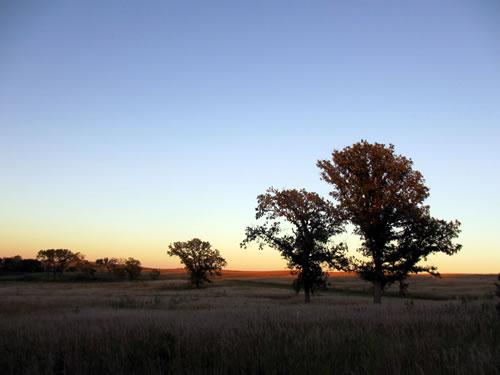 Spring Creek Prairie, Denton, Nebraska. (Ben Vogt)
