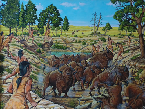 "The Scottsbluff Quarry Bison Kill painting by paleontological artist Kelly Taylor, working with consultants George Ziemens, archeologist, and Dr. George Engelmann, paleontologist, depicts a time twelve thousand to fourteen thousand years ago when Paleo-Indians set traps for bison and may have used the atlatl to kill them. Research by Schultz and Eiseley discovered Paleo-Indian artifacts and fossil remains of prehistoric bison (Bison occidentalis). Because there were no horses in North America at this time to use to pursue bison, traps were likely prepared. According to The Cellars of Time (Nebraska Game and Parks Commission, 1995), ""Hunters used the increased leverage provided by the atlatl to give added velocity and range to their weapons. This spear-thrower was virtually abandoned after development of the bow and arrow."" Ziemens notes in Paleontological Evidence for the Antiquity of the Scottsbluff Bison Quarry and Its Associated Artifacts (Blackwell Publishing, 1935) that ""The use of the atlatl is possible even probable but we don't know for sure as no atlatl have been found that date to that time period."" (Ray Boice)"