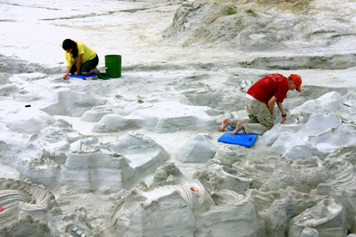 Visitors to Ashfall are able to watch scientists continuing the excavation work. (Paul A. Johnsgard)