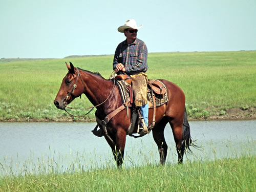 Todd Mortenson examining his ranch from horseback. (Colette Kessler, Natural Resources Conservation Service)